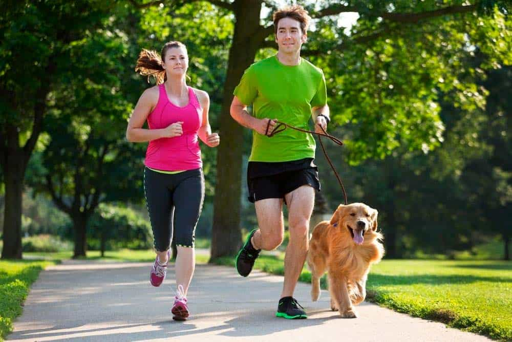 Couple running with their golden retriever.